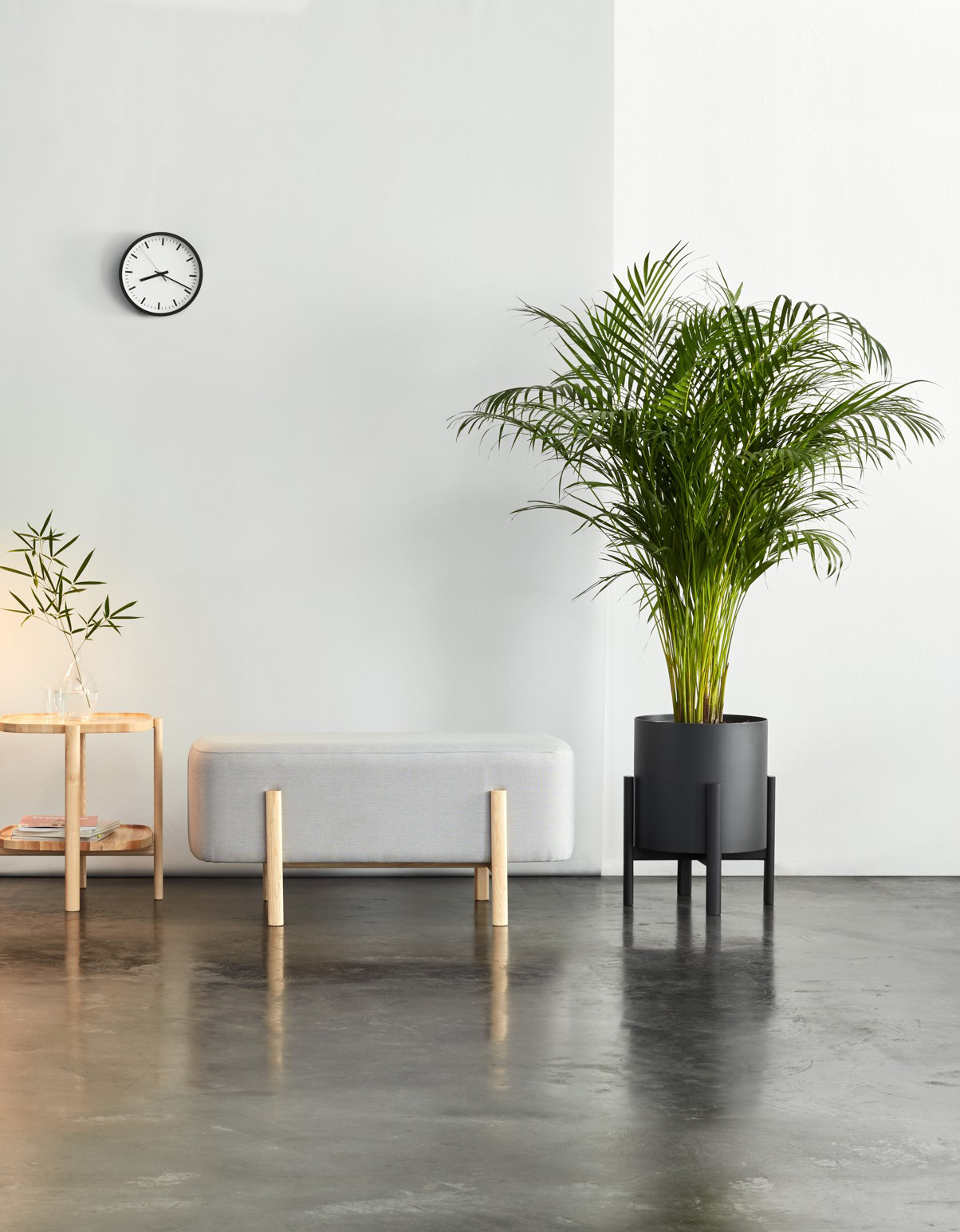A More Pleasant Space For Waiting With Plants